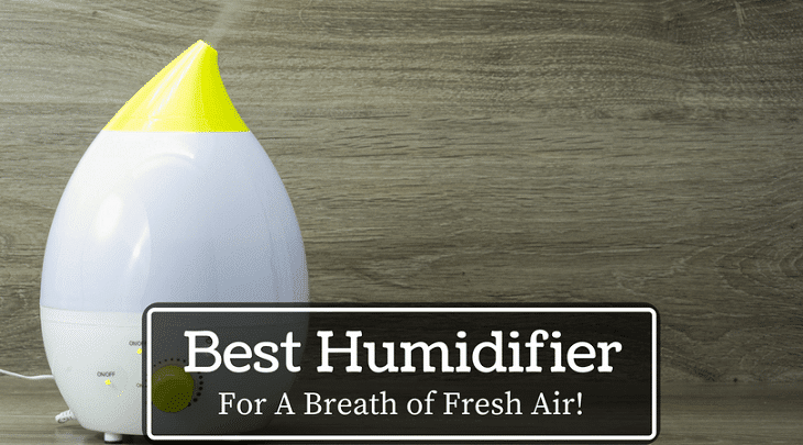 Best Cool Mist Humidifiers for Baby'