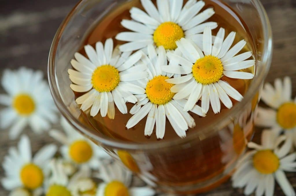 Is chamomile tea good for babies